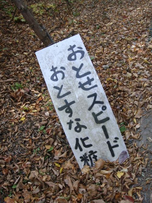 f:id:Saitoh:20081102142044j:plain