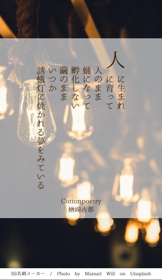 f:id:Sakananokimochi:20180524100556p:plain