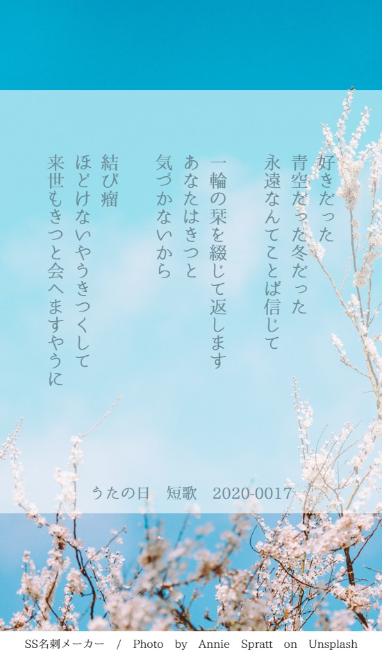 f:id:Sakananokimochi:20200308160255j:plain