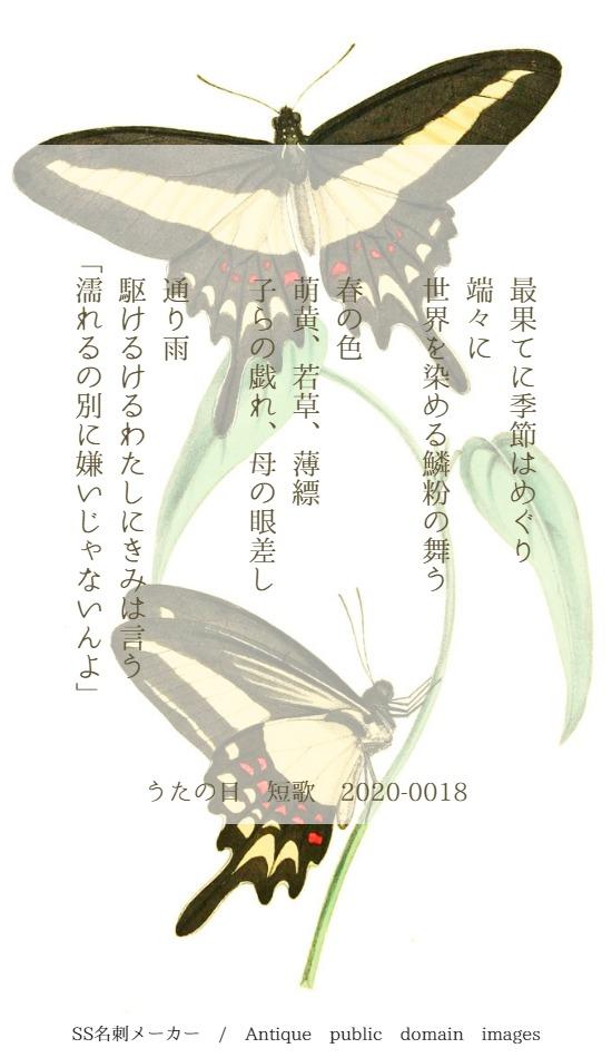 f:id:Sakananokimochi:20200314085227j:plain