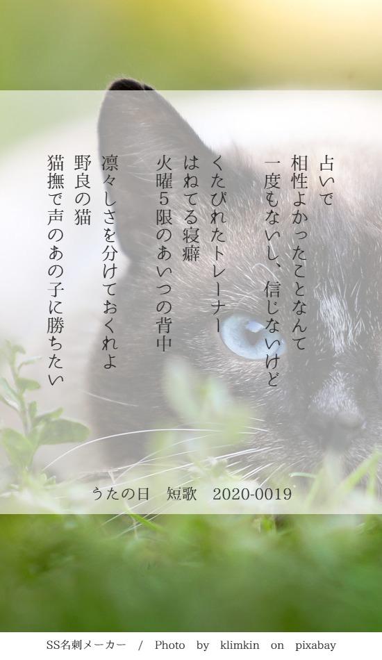 f:id:Sakananokimochi:20200321094440j:plain