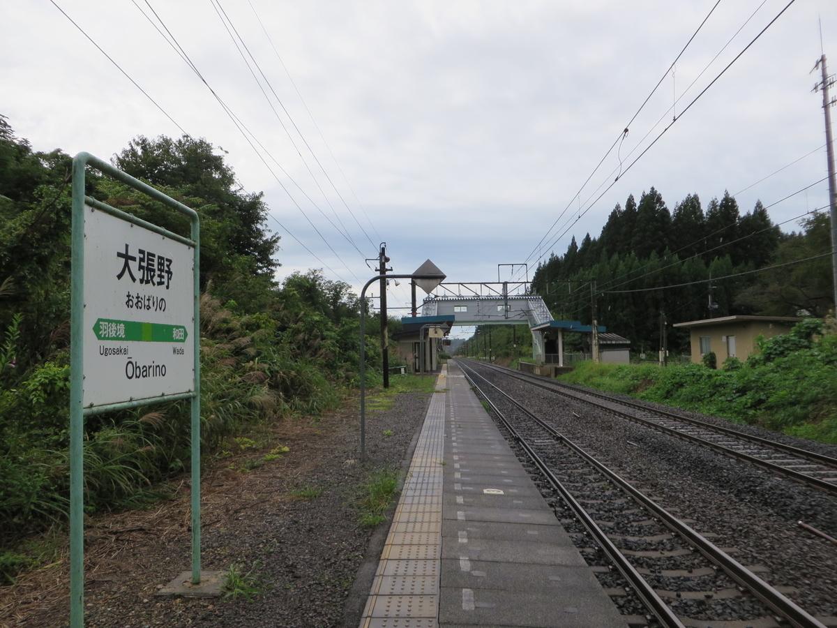 f:id:Sakasegawa3019:20191019055705j:plain