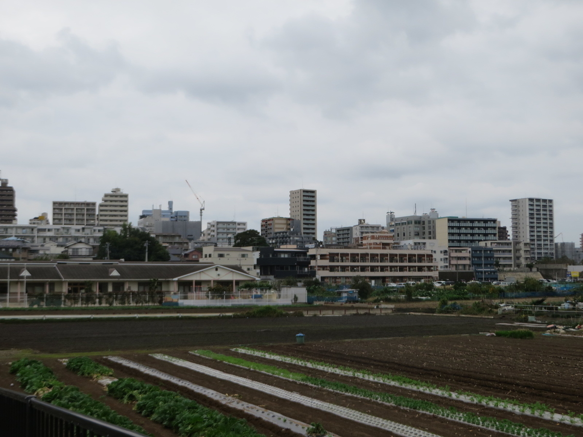 f:id:Sakasegawa3019:20191119180013j:plain