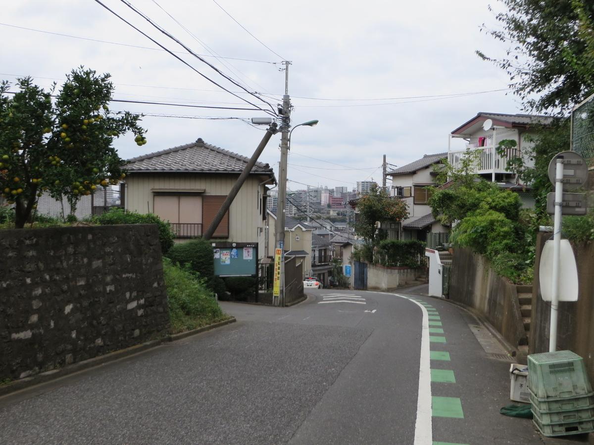 f:id:Sakasegawa3019:20191119180920j:plain