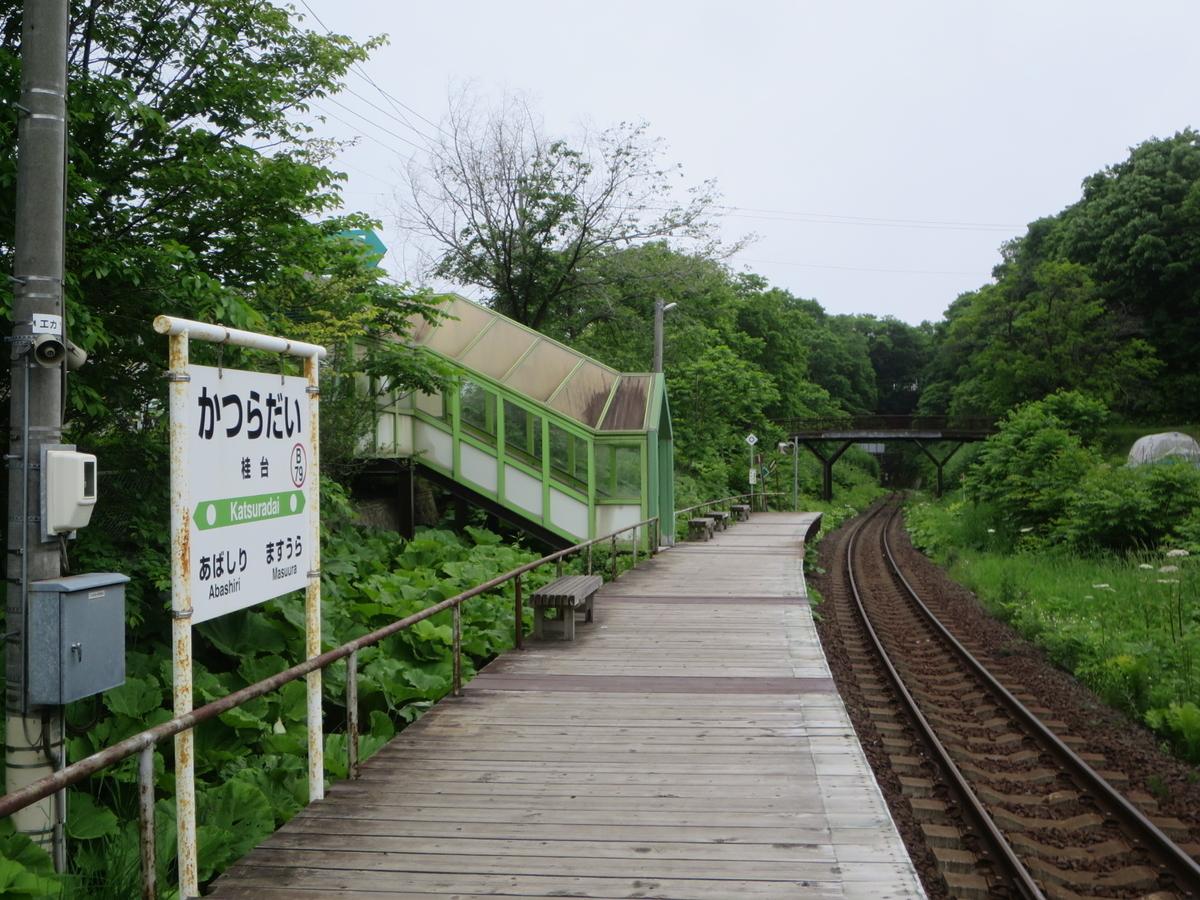 f:id:Sakasegawa3019:20200706064406j:plain