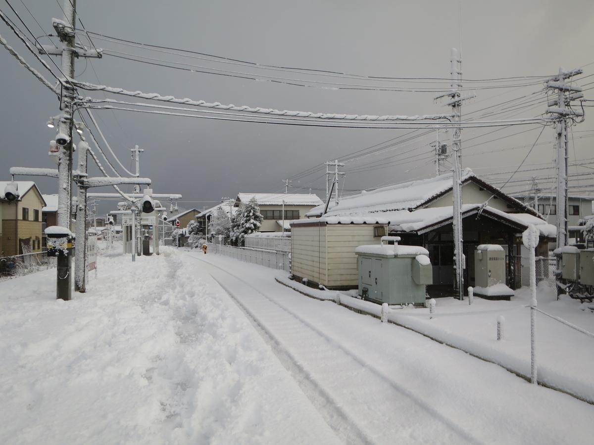 f:id:Sakasegawa3019:20201220150005j:plain