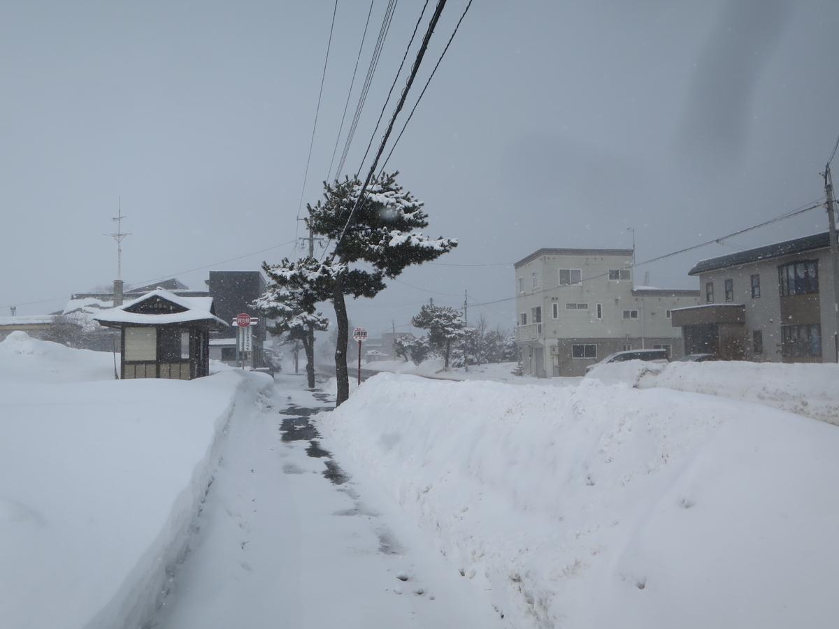f:id:Sakasegawa3019:20210317062020j:plain