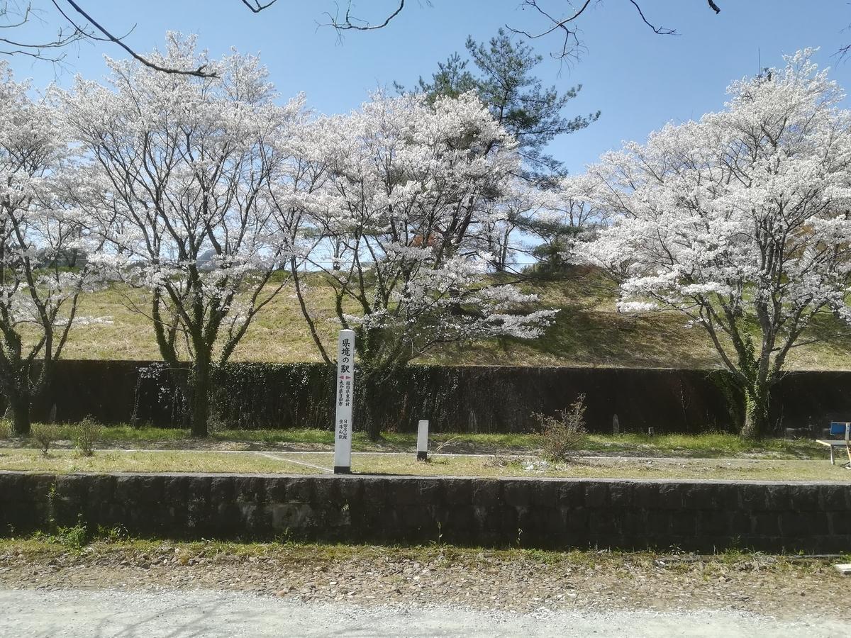 f:id:Sakasegawa3019:20210329082641j:plain