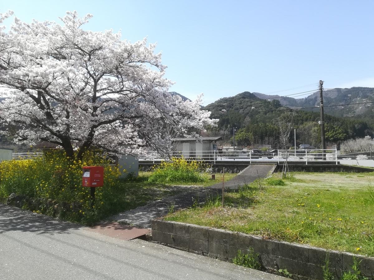 f:id:Sakasegawa3019:20210329083433j:plain