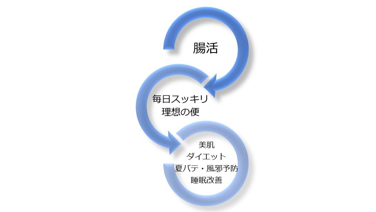f:id:SakiHana:20200811151827j:plain