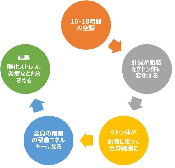 f:id:SakiHana:20211019101429j:plain