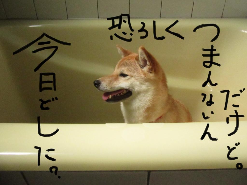 f:id:Sakurachannel0530:20160706194814j:plain