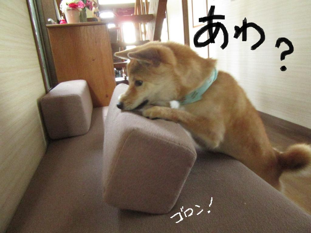 f:id:Sakurachannel0530:20160709134255j:plain