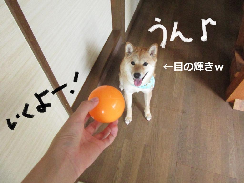 f:id:Sakurachannel0530:20160709135718j:plain