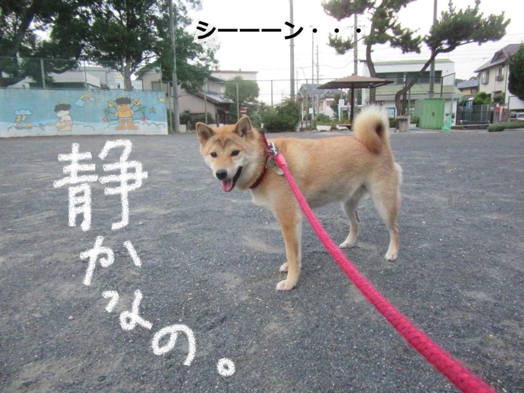 f:id:Sakurachannel0530:20160816204900j:plain