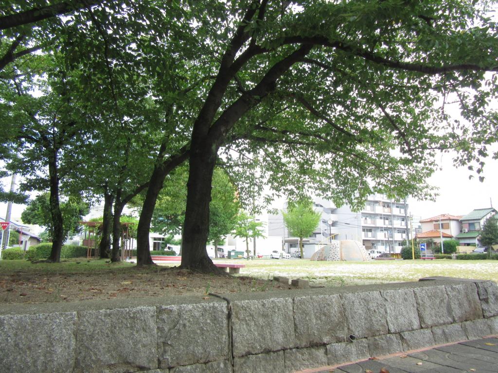 f:id:Sakurachannel0530:20160821213045j:plain