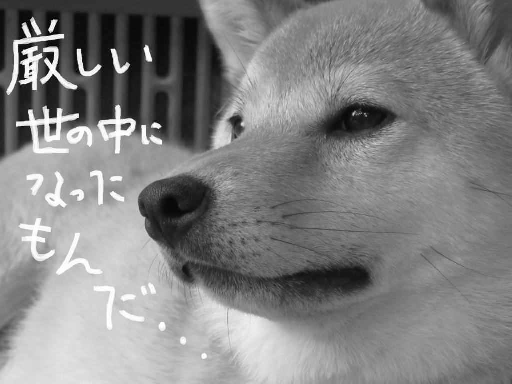 f:id:Sakurachannel0530:20160830184558j:plain