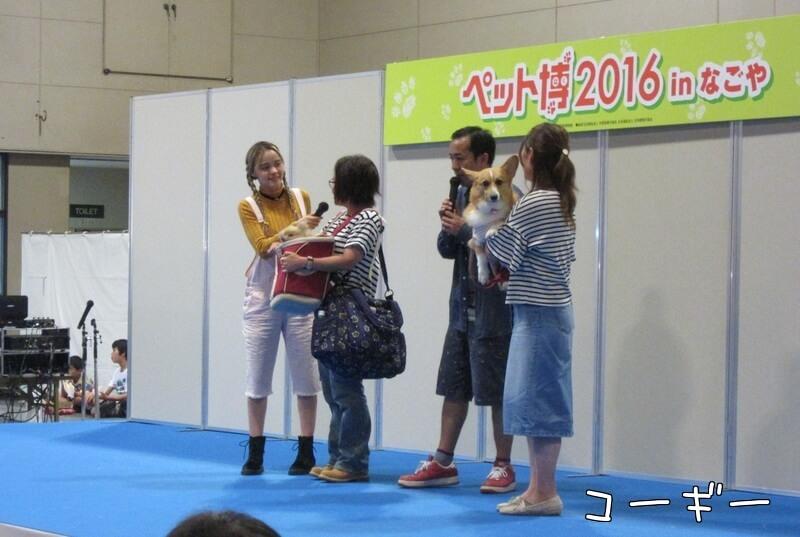 f:id:Sakurachannel0530:20161011233211j:plain