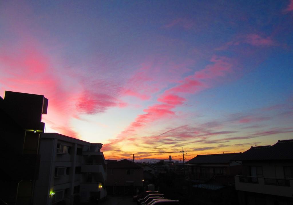 f:id:Sakurachannel0530:20161203203004j:plain