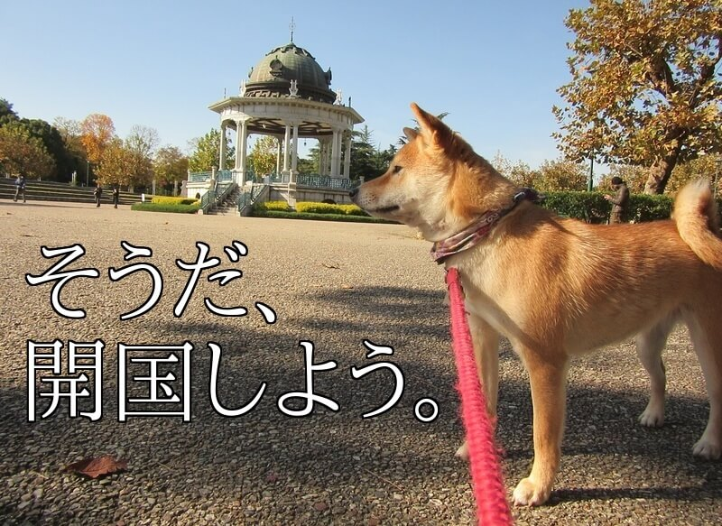 f:id:Sakurachannel0530:20161208190335j:plain