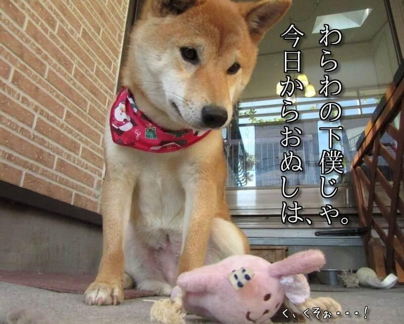 f:id:Sakurachannel0530:20161225211618j:plain