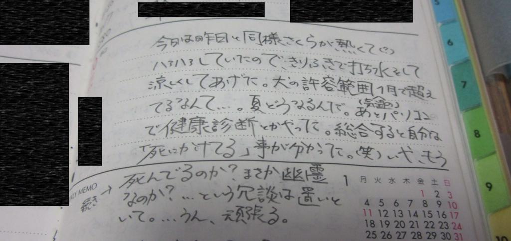 f:id:Sakurachannel0530:20161230233654j:plain