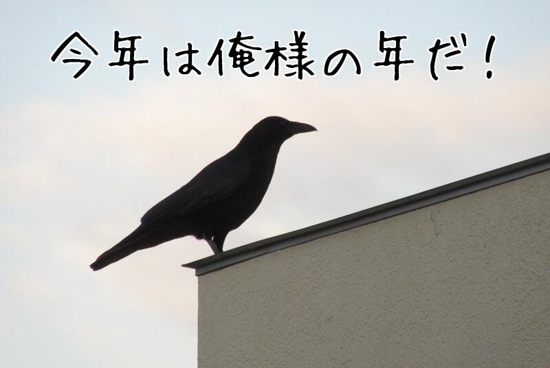 f:id:Sakurachannel0530:20170106210516j:plain