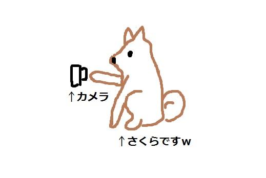f:id:Sakurachannel0530:20170201204239j:plain