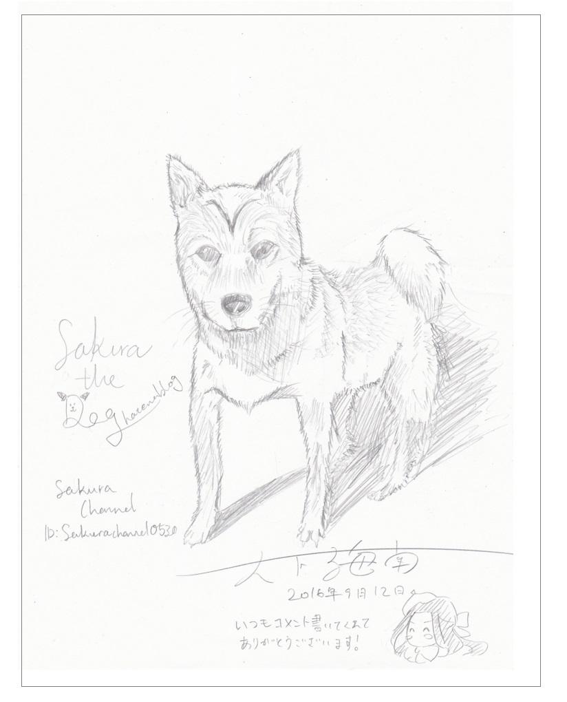 f:id:Sakurachannel0530:20170419173621j:plain