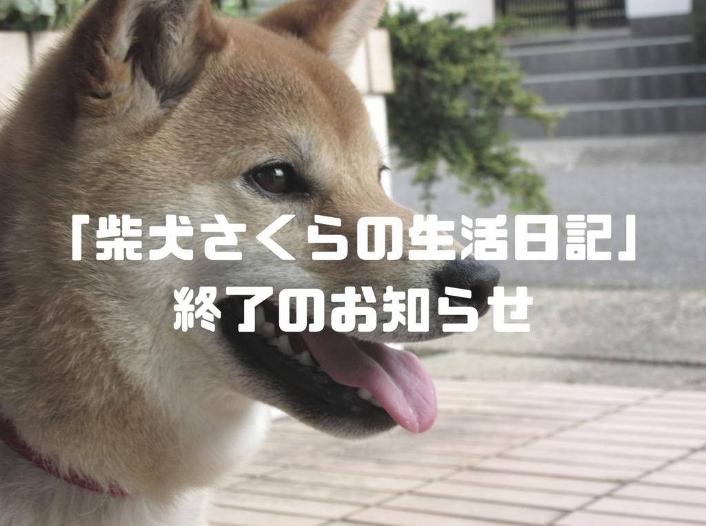 f:id:Sakurachannel0530:20170910175117j:plain