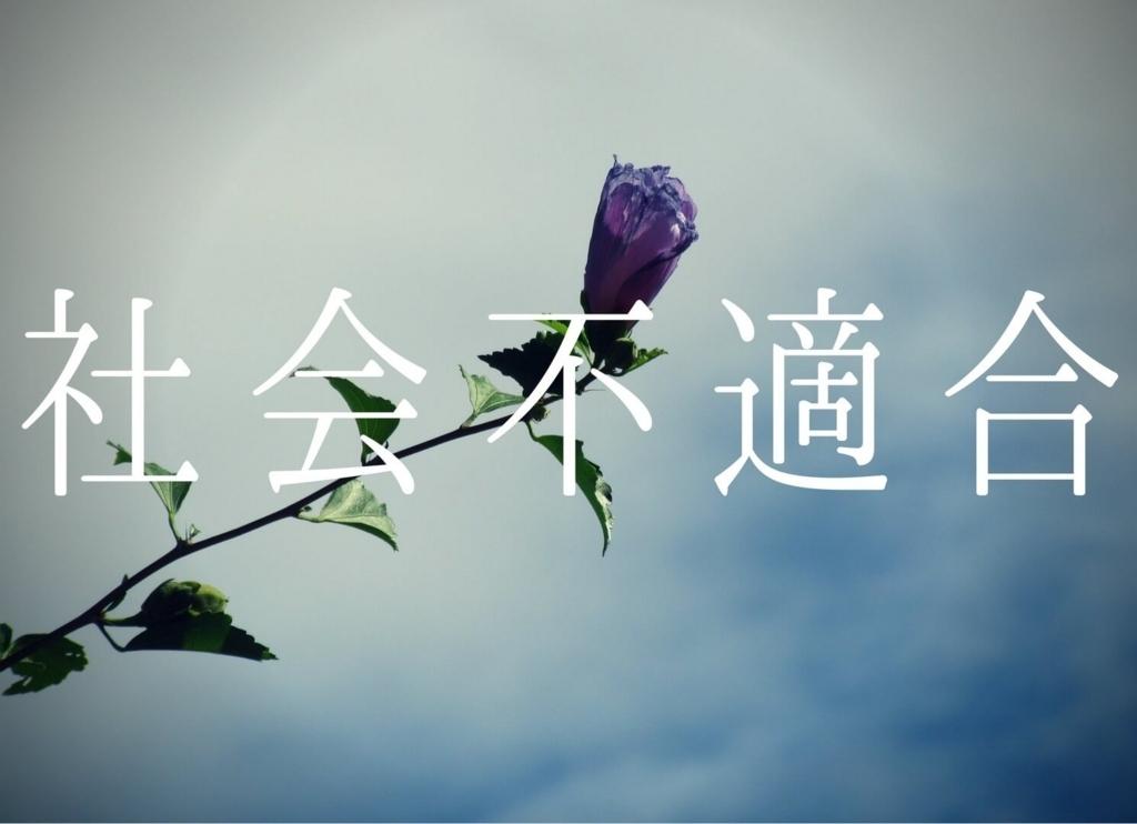 f:id:Sakurachannel0530:20170928185722j:plain
