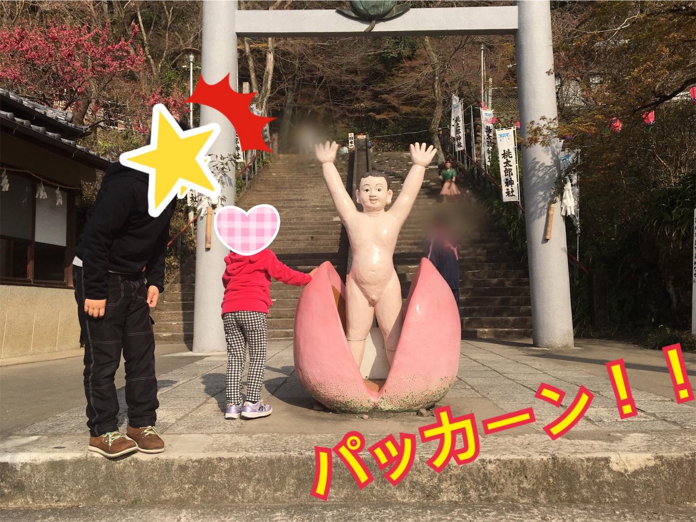 f:id:Sakuranbox:20190420213733j:image