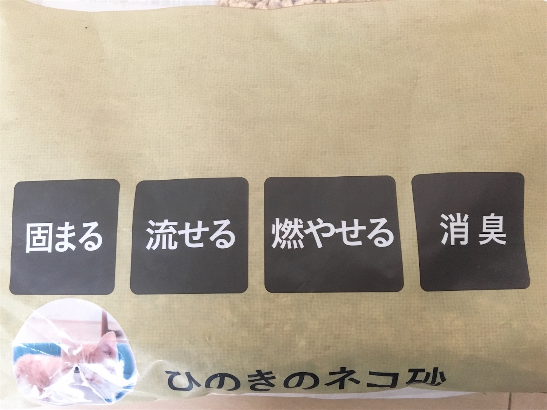 f:id:Sakuranbox:20200202210037j:image