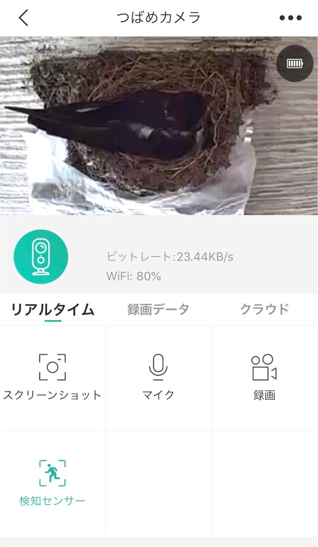f:id:Sakuranbox:20200603112841j:plain