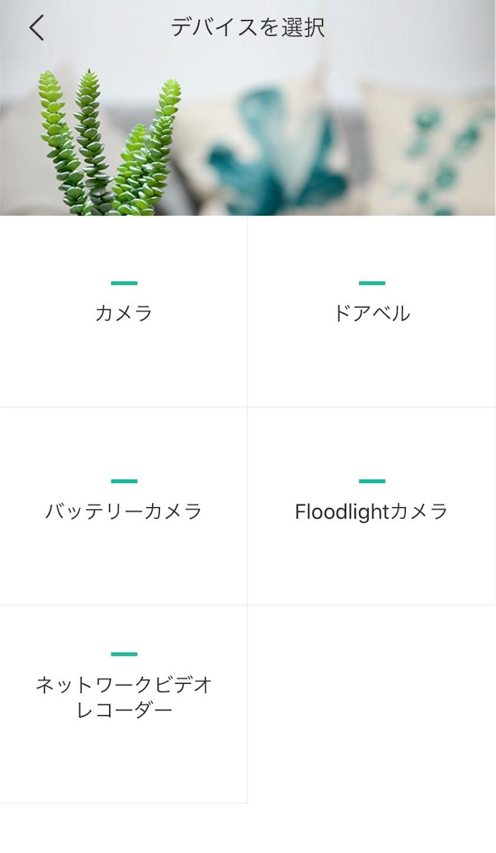 f:id:Sakuranbox:20200603112851j:plain