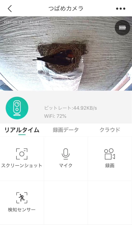 f:id:Sakuranbox:20200603112856j:plain