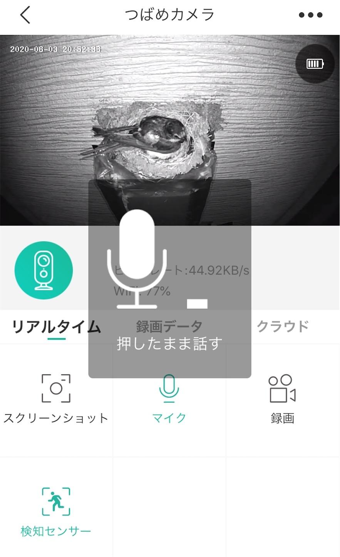 f:id:Sakuranbox:20200603205337j:plain