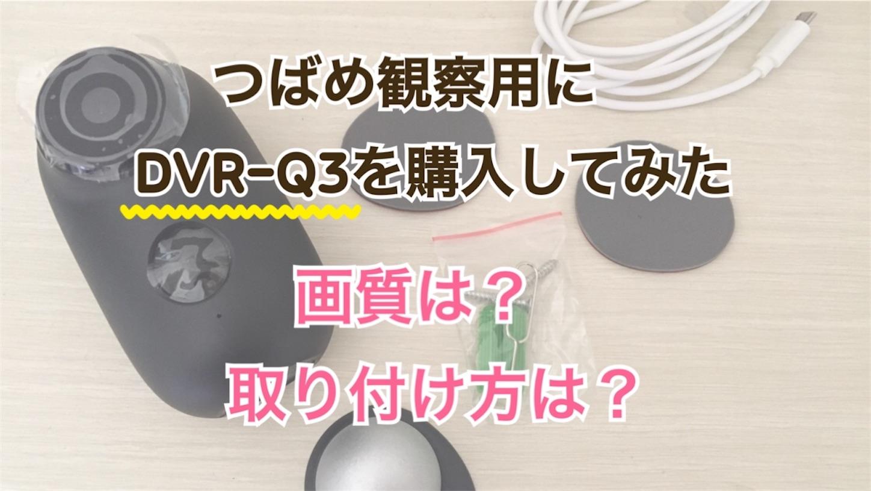 f:id:Sakuranbox:20200608160005j:image