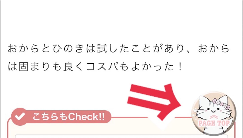 f:id:Sakuranbox:20210208152916j:plain