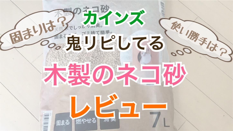 f:id:Sakuranbox:20210223210805j:image