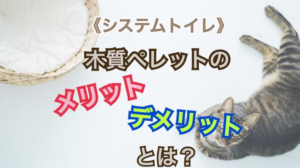 f:id:Sakuranbox:20210808152547j:plain