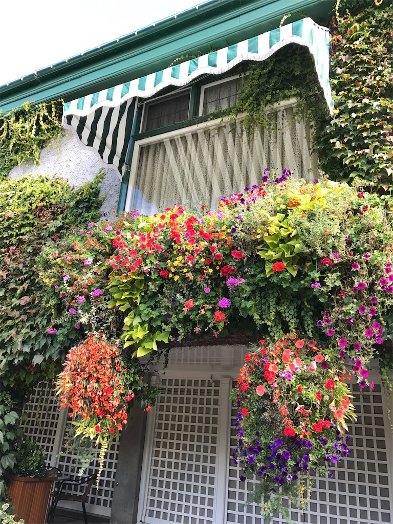 f:id:Samantha_TOKYO:20161027175816j:image