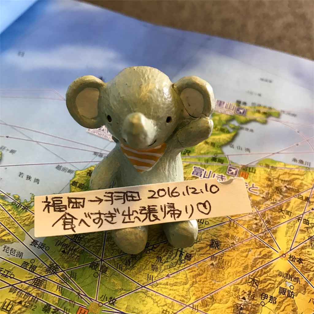 f:id:Samantha_TOKYO:20161214203334j:image