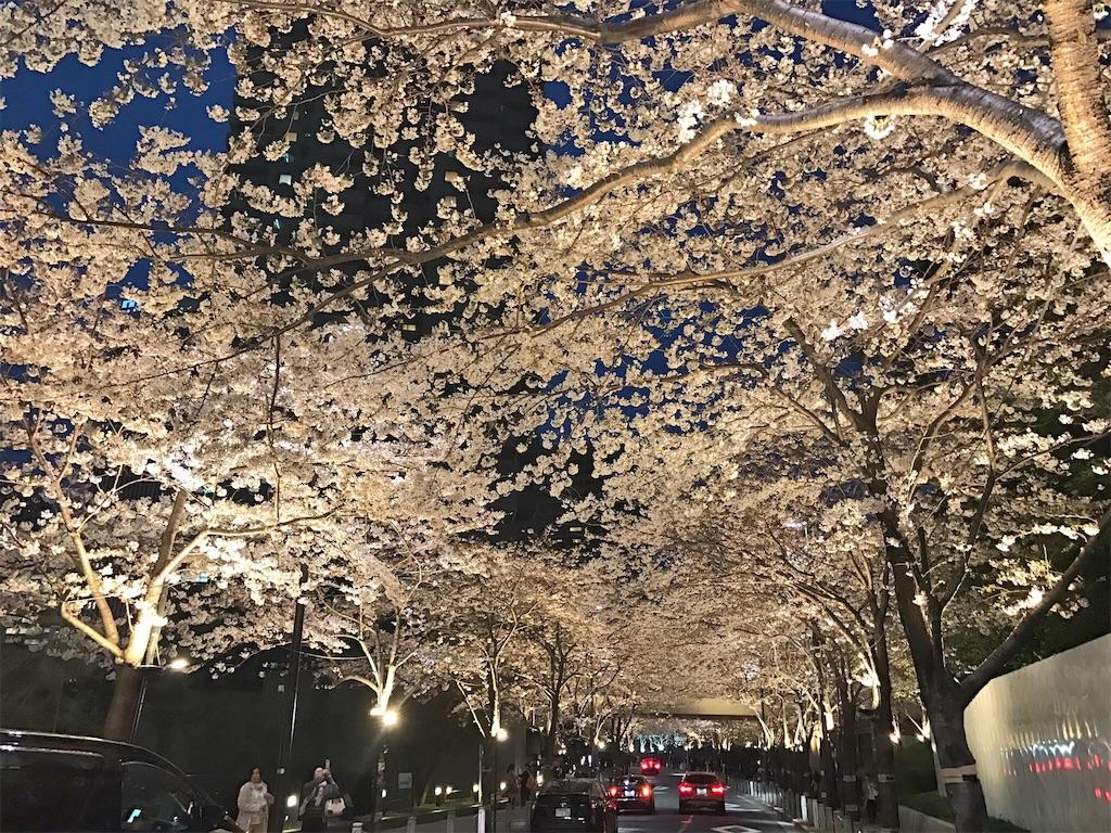 f:id:Samantha_TOKYO:20170405195119j:image