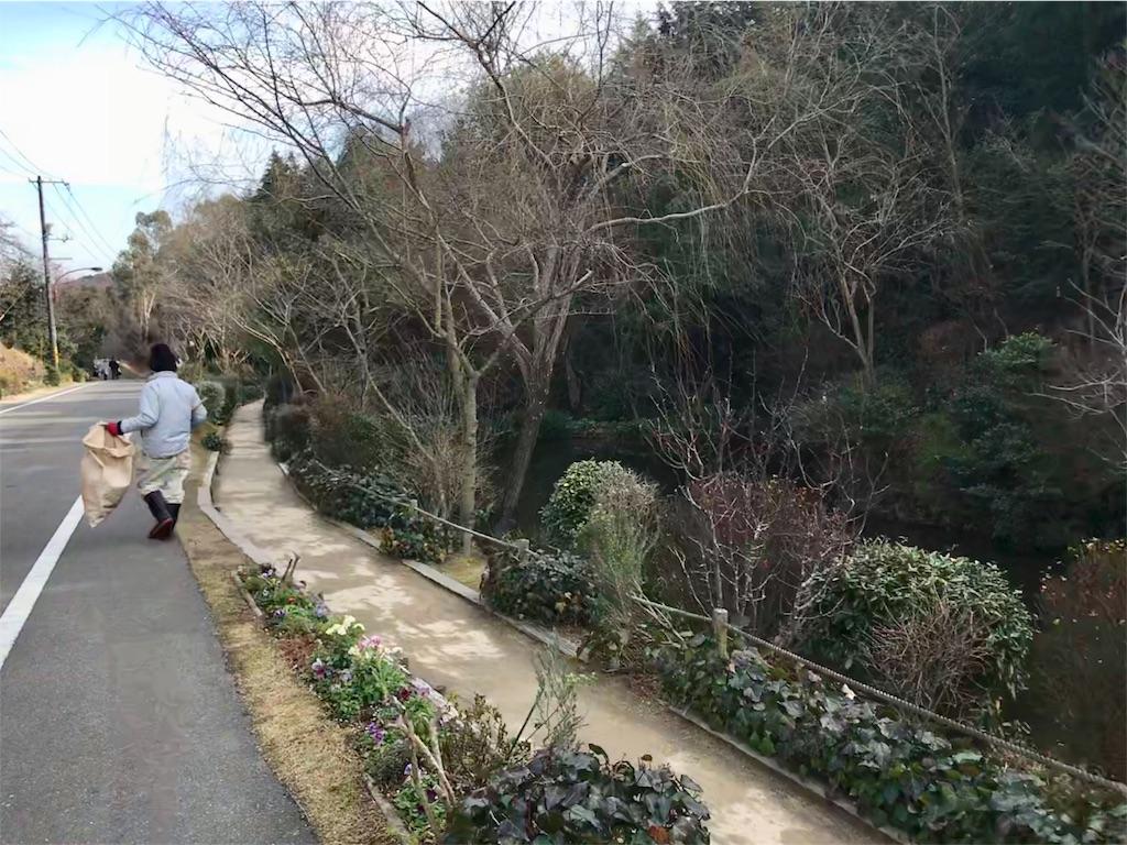 f:id:Samantha_TOKYO:20180602054020j:image