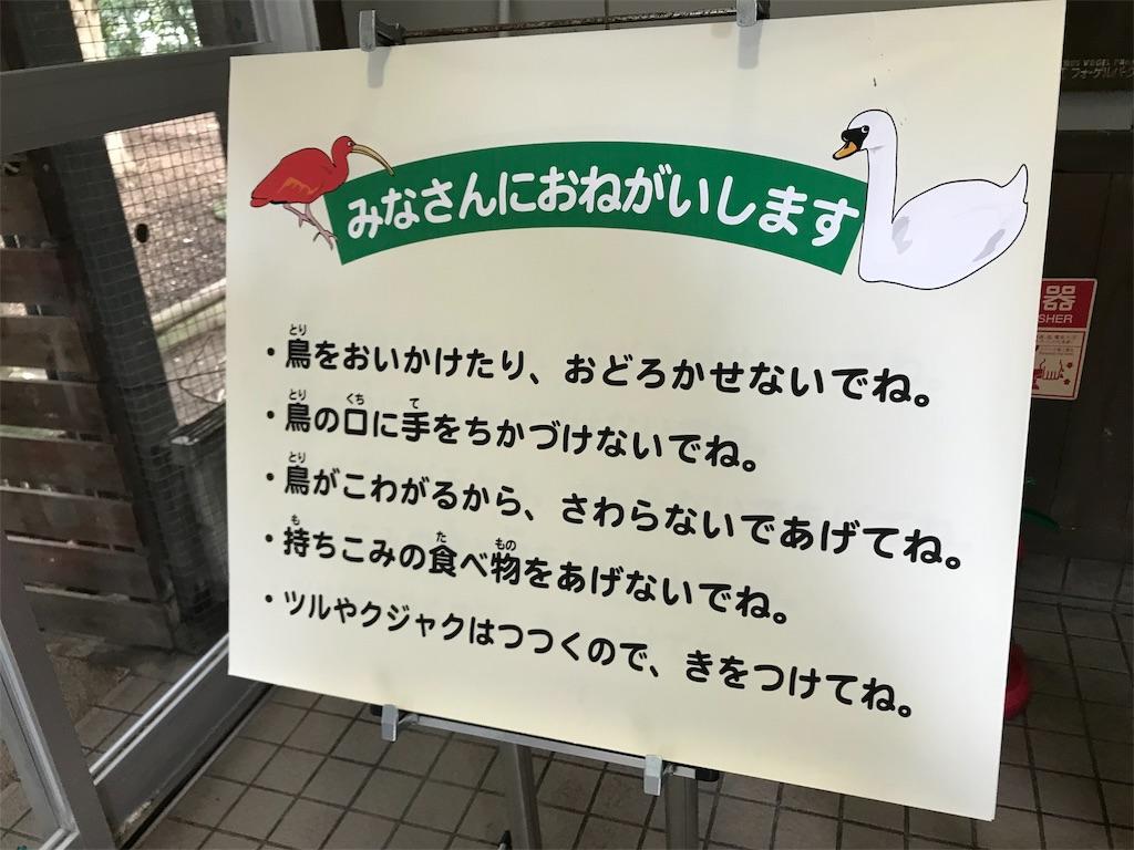 f:id:Samantha_TOKYO:20190214141820j:image