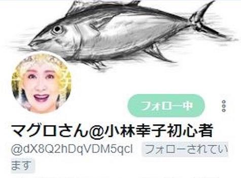 f:id:Sanhachi:20180723171359j:plain