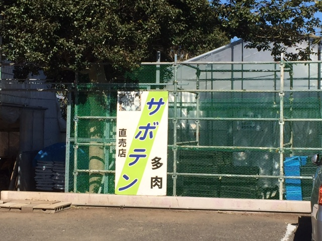 f:id:Sanpo-yoshi2016:20170211173312j:plain