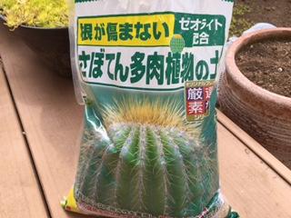 f:id:Sanpo-yoshi2016:20170219010207j:plain
