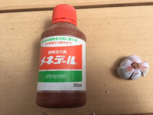 f:id:Sanpo-yoshi2016:20170402155523j:plain